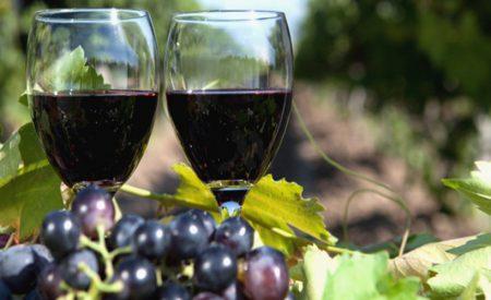 Les meilleurs vignobles et dégustations de vin à Niagara Falls
