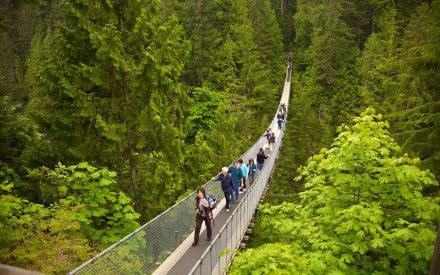 Tourisme Durable : Entrevues Avec Les Meilleurs Voyageurs À Conscience Écologique