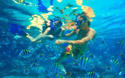 Attention, voies glissantes! Aventures aquatiques sur la Riviera Maya