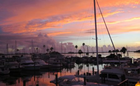 Sept raisons pour lesquelles j'adore la délicieuse ville de Dunedin en Floride