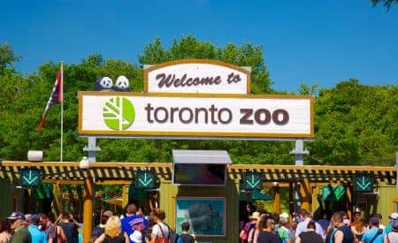 Must-See Things in Toronto if You Only Have One Weekend
