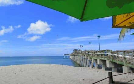 Six ways to enjoy charming Venice, Florida