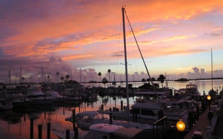 Seven Reasons I Love Delightful Dunedin, Florida