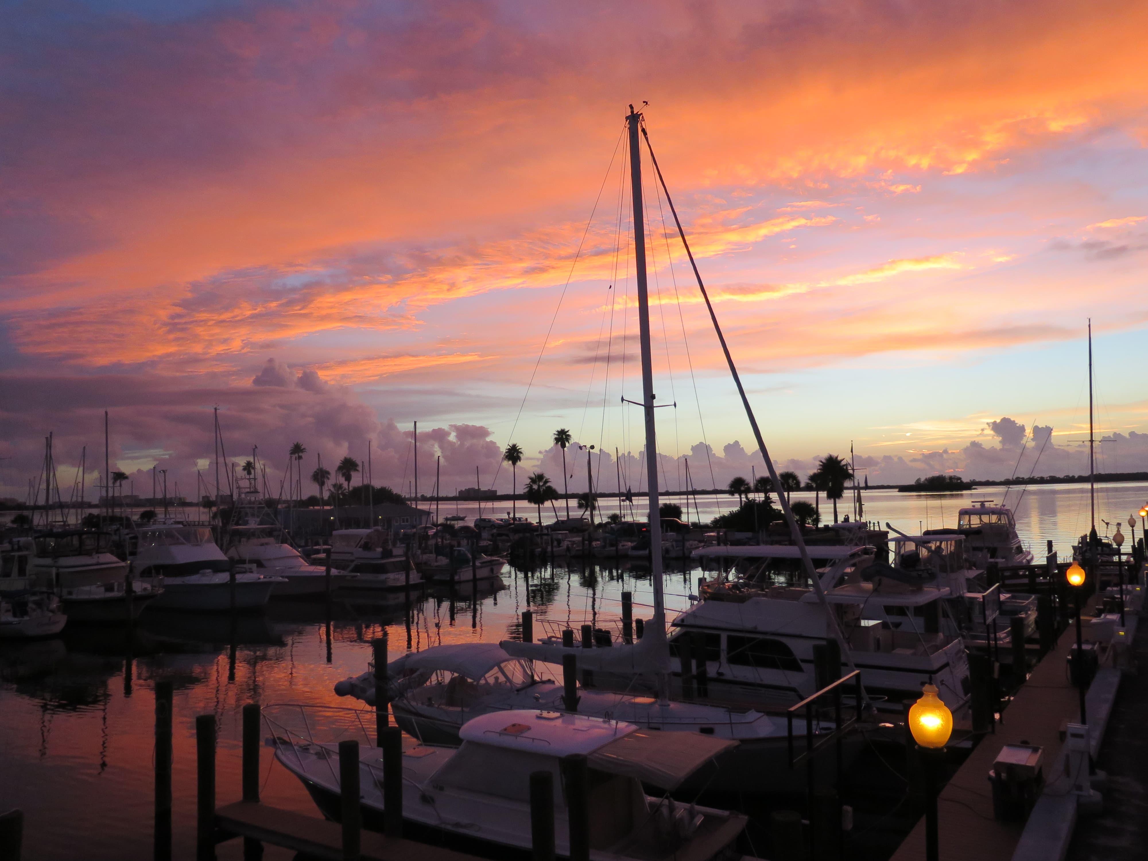 Seven Reasons I Love Delightful Dunedin, Florida