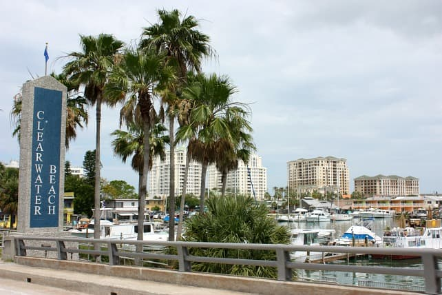clearwater-beach-tammi-roy