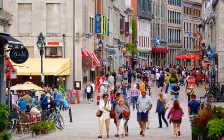 4 Reasons You Should Visit Montreal