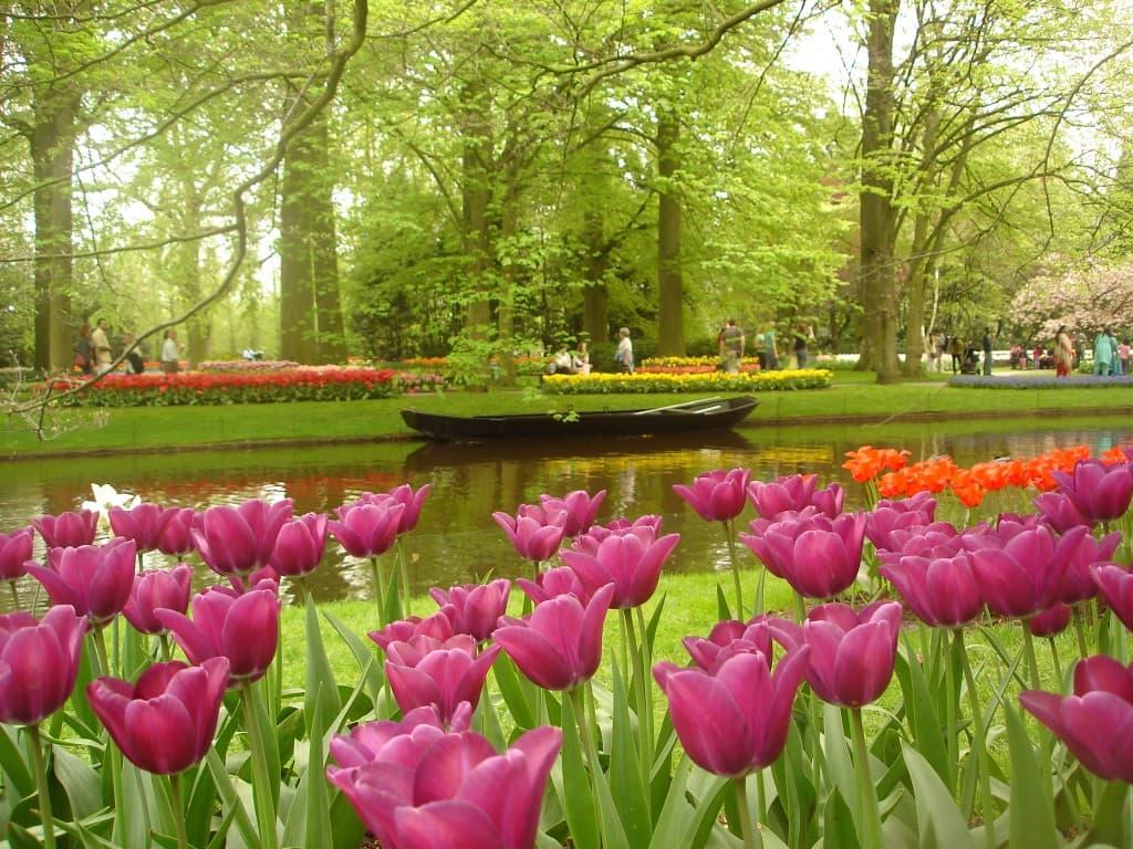 europe in the spring keukenhof