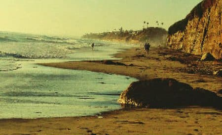 Top 5 Free Things to Do in San Diego