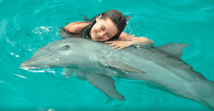 Dolphin Discovery in Playa del Carmen