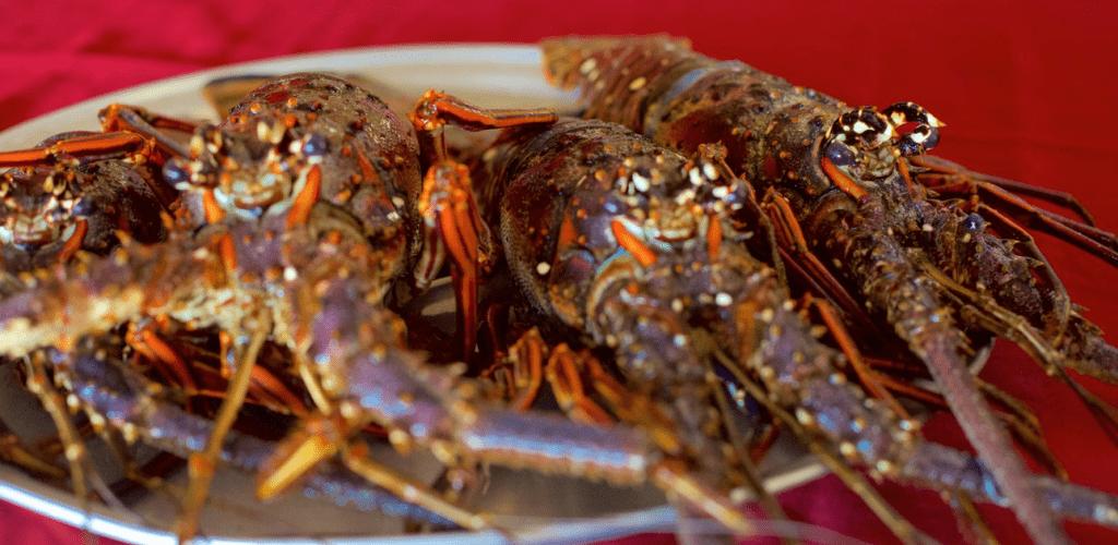 Punta Cana Food
