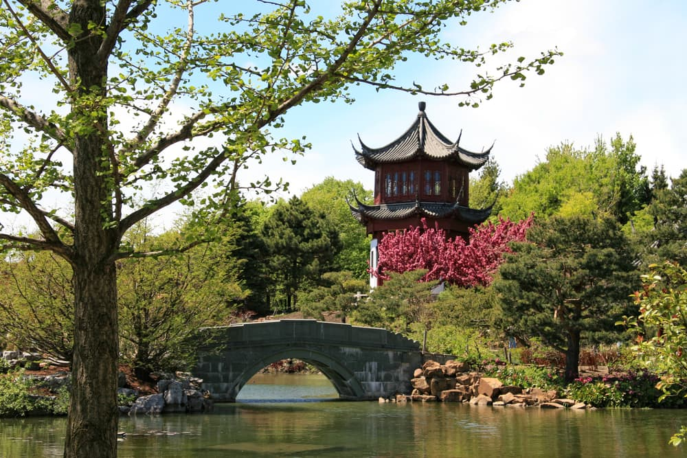 Chinese garden at Montreal Botanical garden