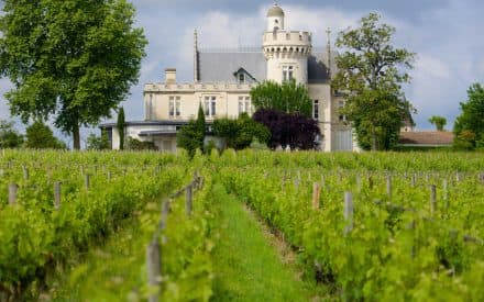 A Beginner's Guide to France's Wine Regions