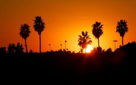 Must See Phoenix Hot Spots
