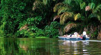 Tortuguero National Park Cruise