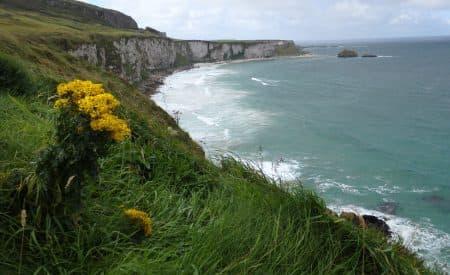 A Road Trip Through Ireland in Photos