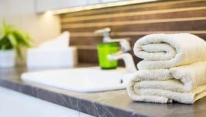Eco-Friendly Hotel