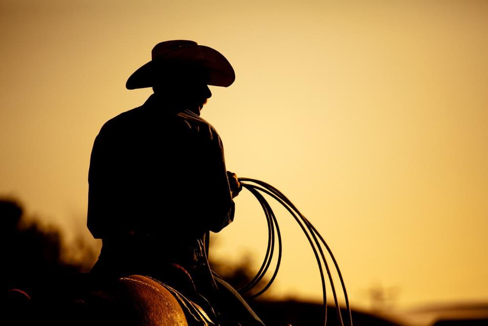 Body - Cowboy