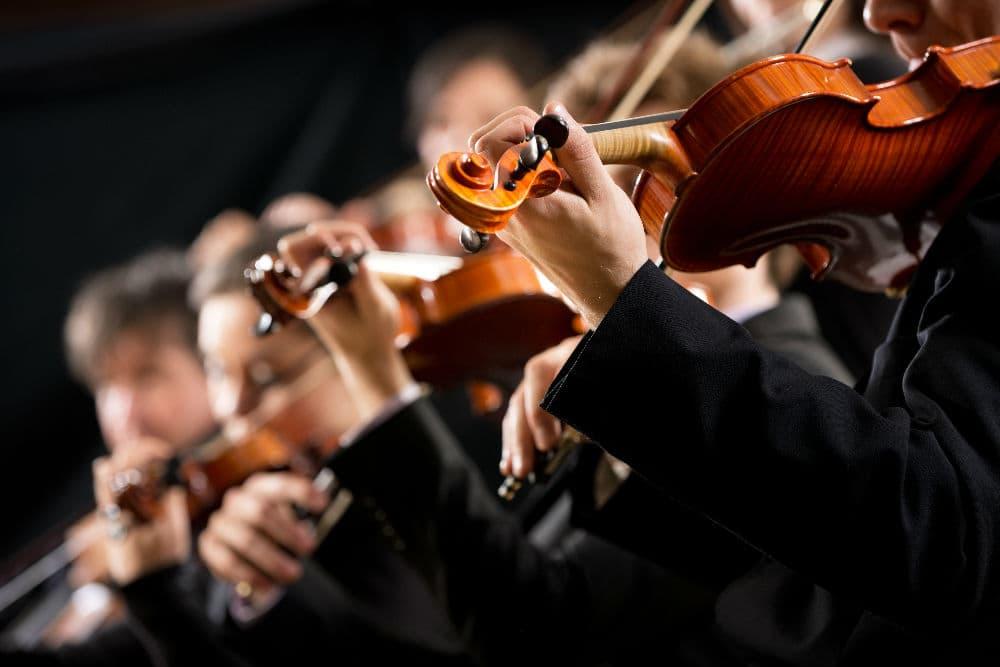 Body - violins
