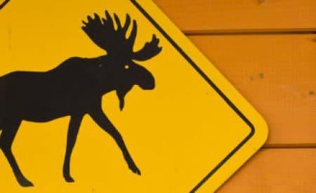 Weird Canada: Traditions