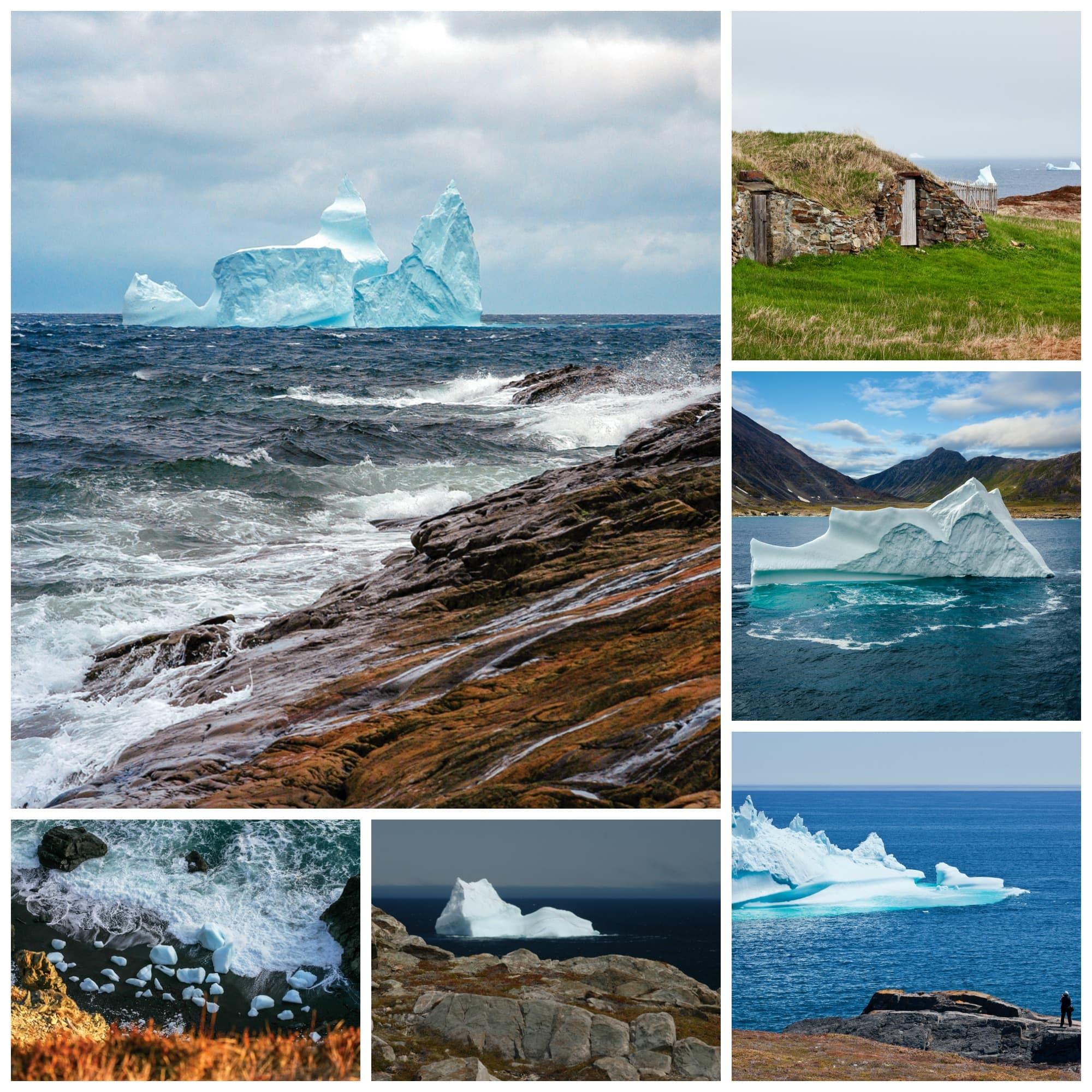 Newfoundland Bergs