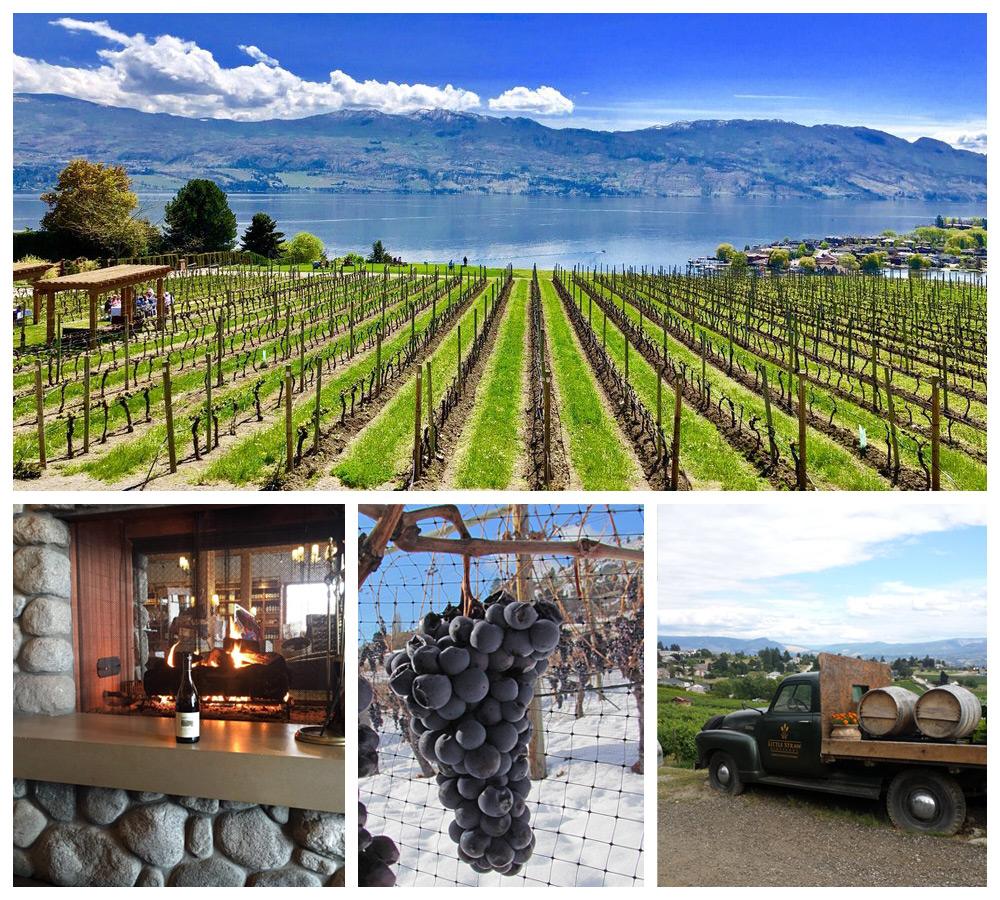 Vineyards in West Kelowna, a top cozy destination in Canada
