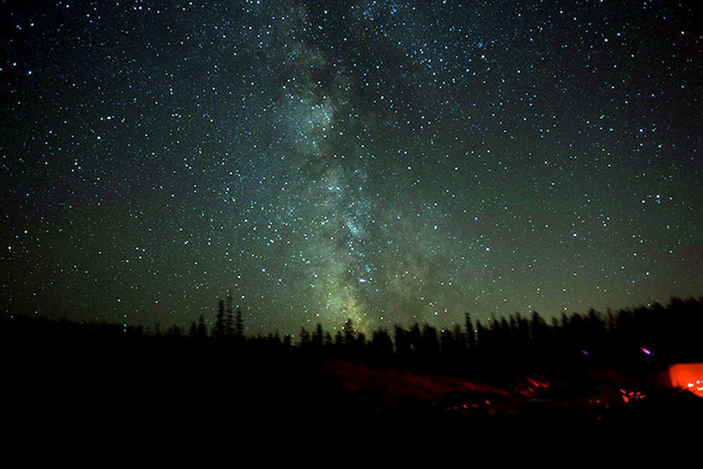 Dark night sky over Big White Mountain Ecological Reserve with thousands of stars with pine trees on the horizon.