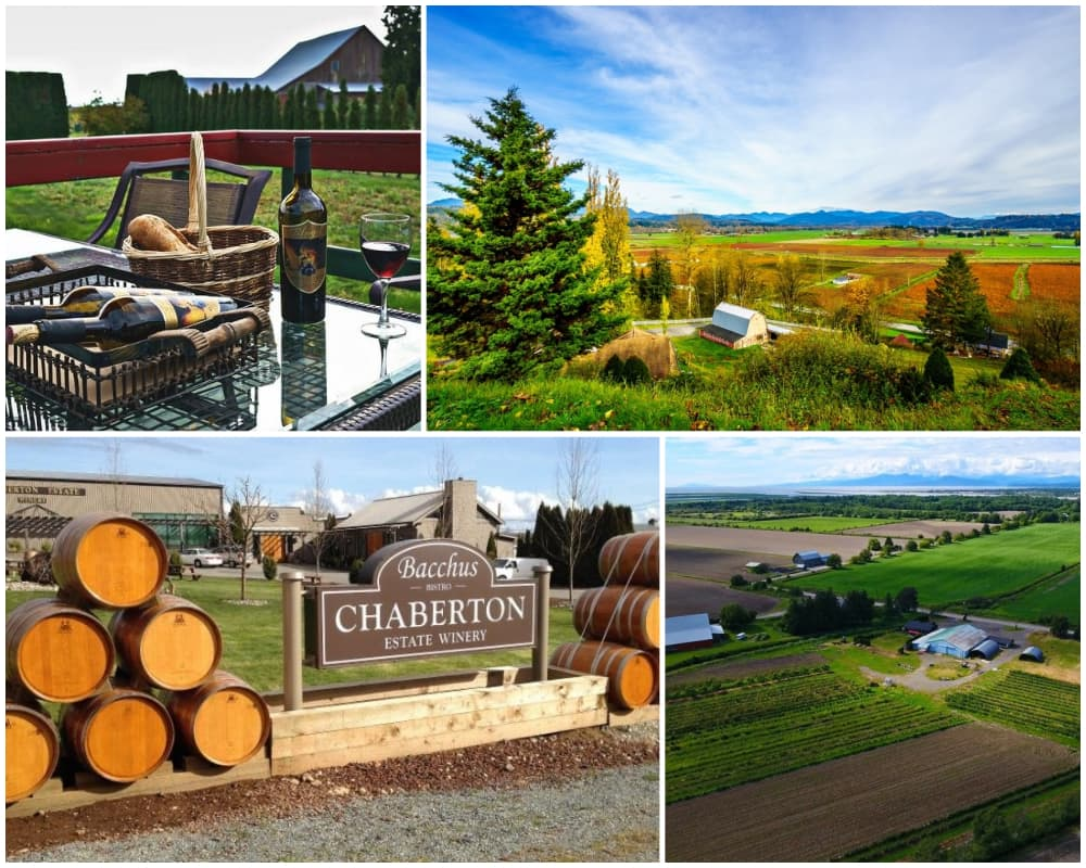 Collage of vineyards and wineries in Fraser Valley