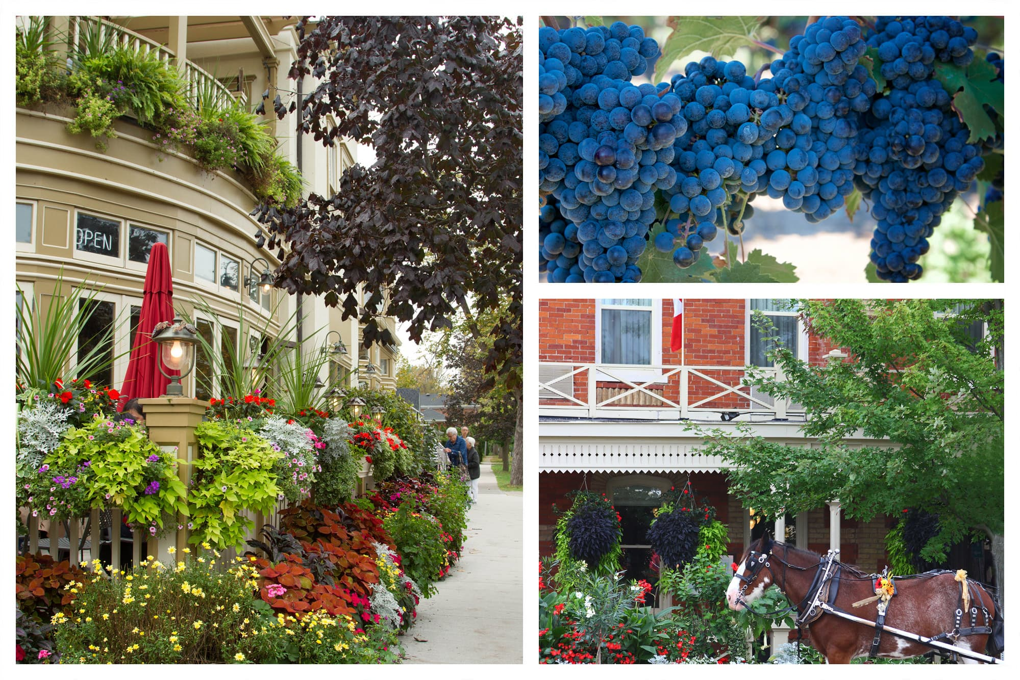 Niagara, Ontario Vacation Places to Visit