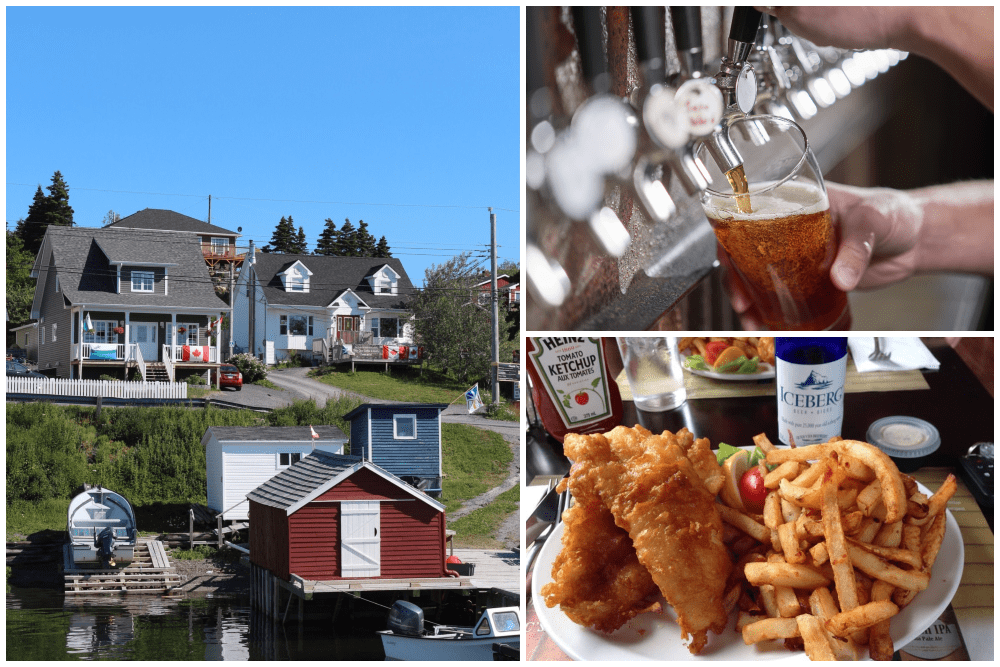 Scenic view of Dildo Harbour and fish and chips with beer