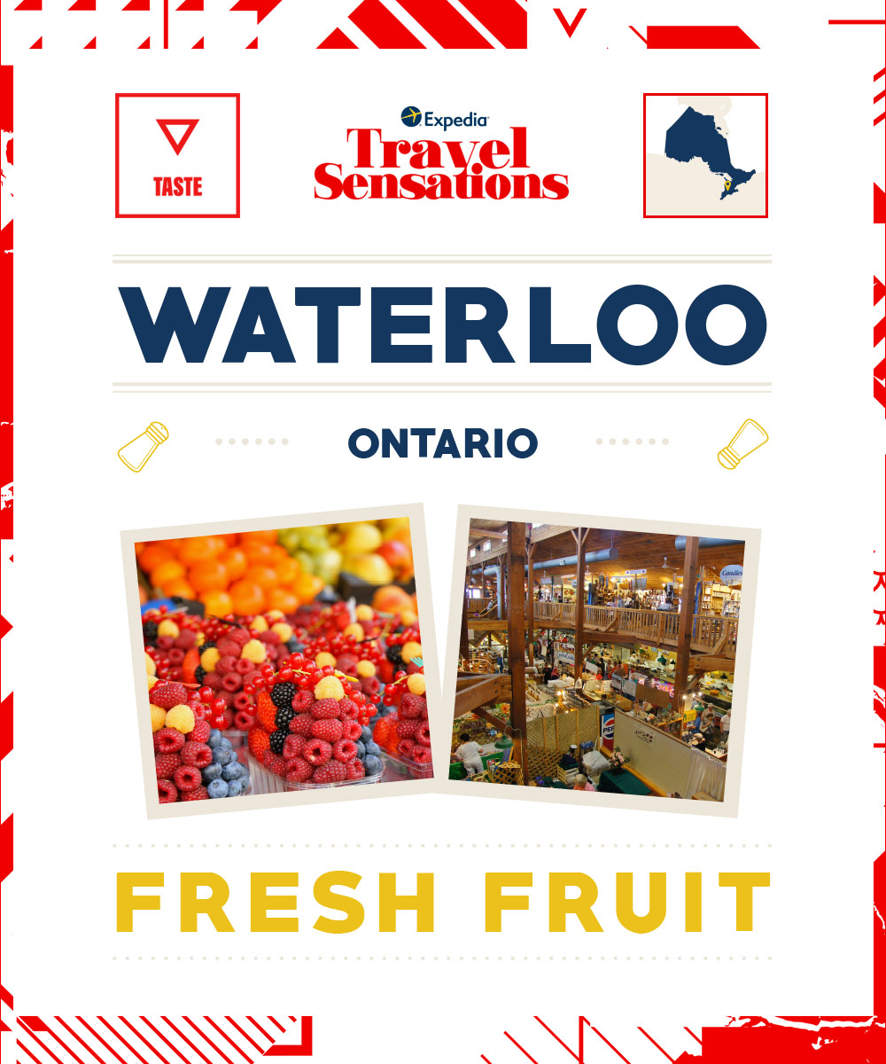 The best flavours in Waterloo, Ontario
