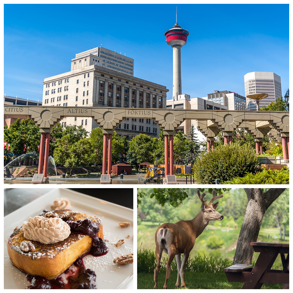 City and nature views of Calgary, Alberta--a top destination for Baby Boomers.