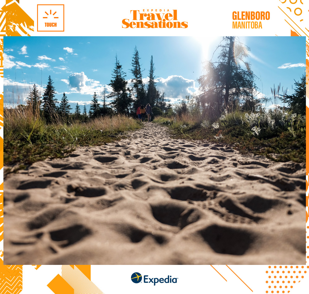 The Spirit Sands in Spruce Woods Provincial Park, Manitoba, which will give you goosebumps