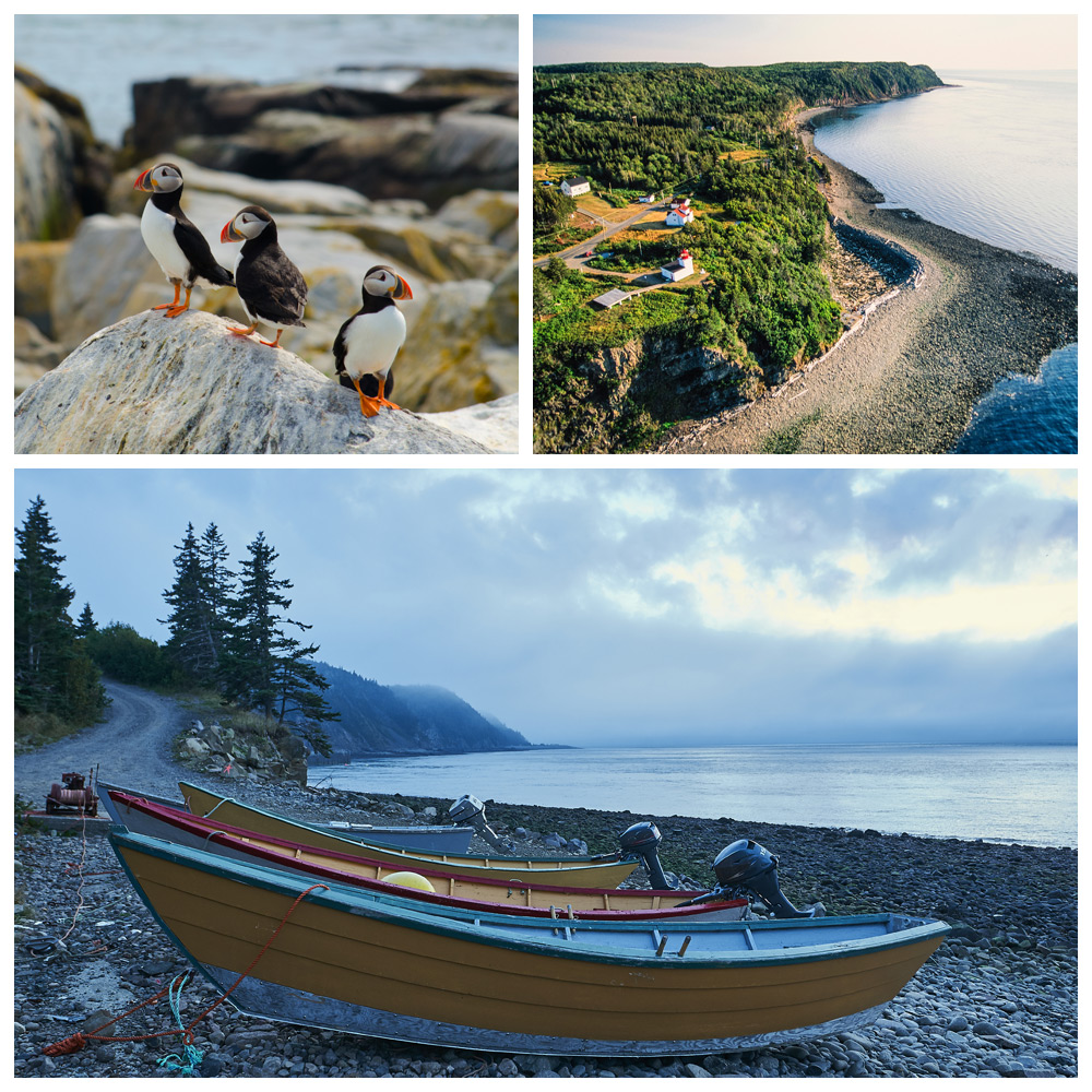 Views of Grand Manan Island, with puffins and boats