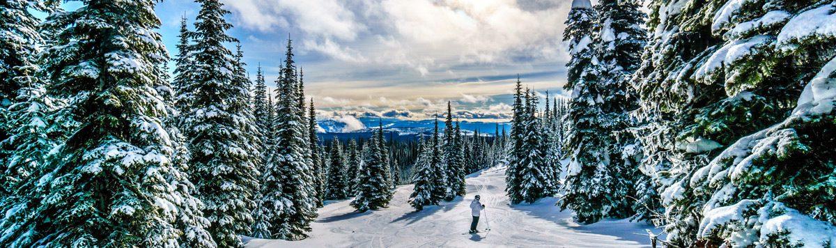 Snowy, winter landscape of Canada