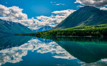 5 things to consider when planning an Alaskan cruise