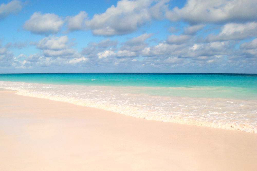 pink sands beach best beaches