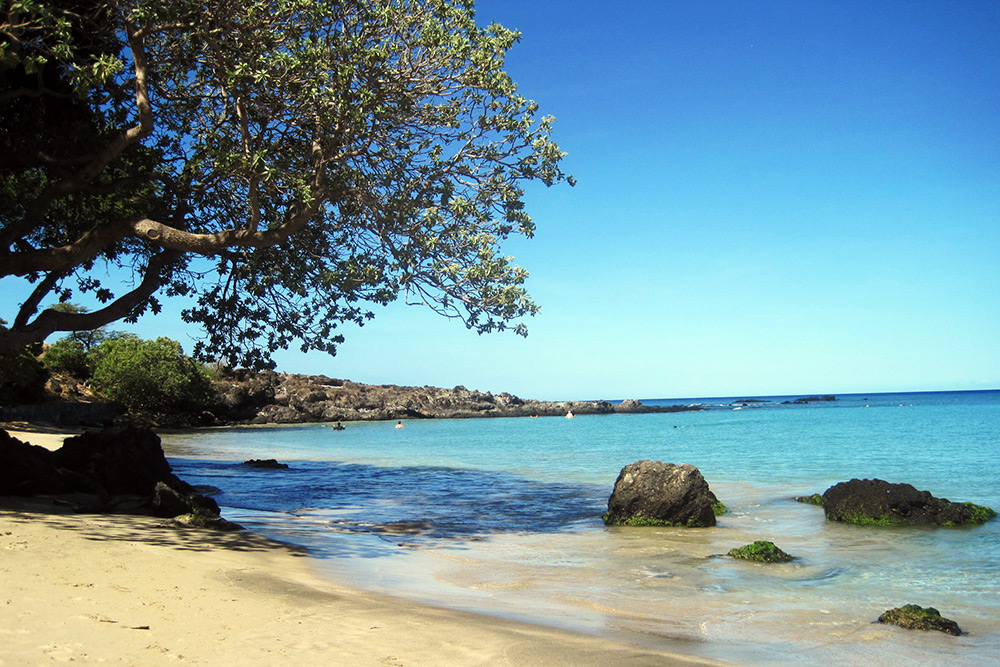 Mauna kea beach best beaches