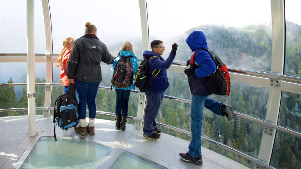 People looking at Grouse Mountain from the observatory
