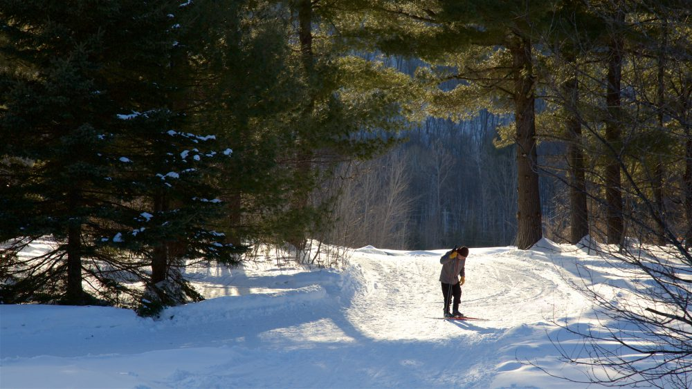 Person hiking on snow-covered path in the woods
