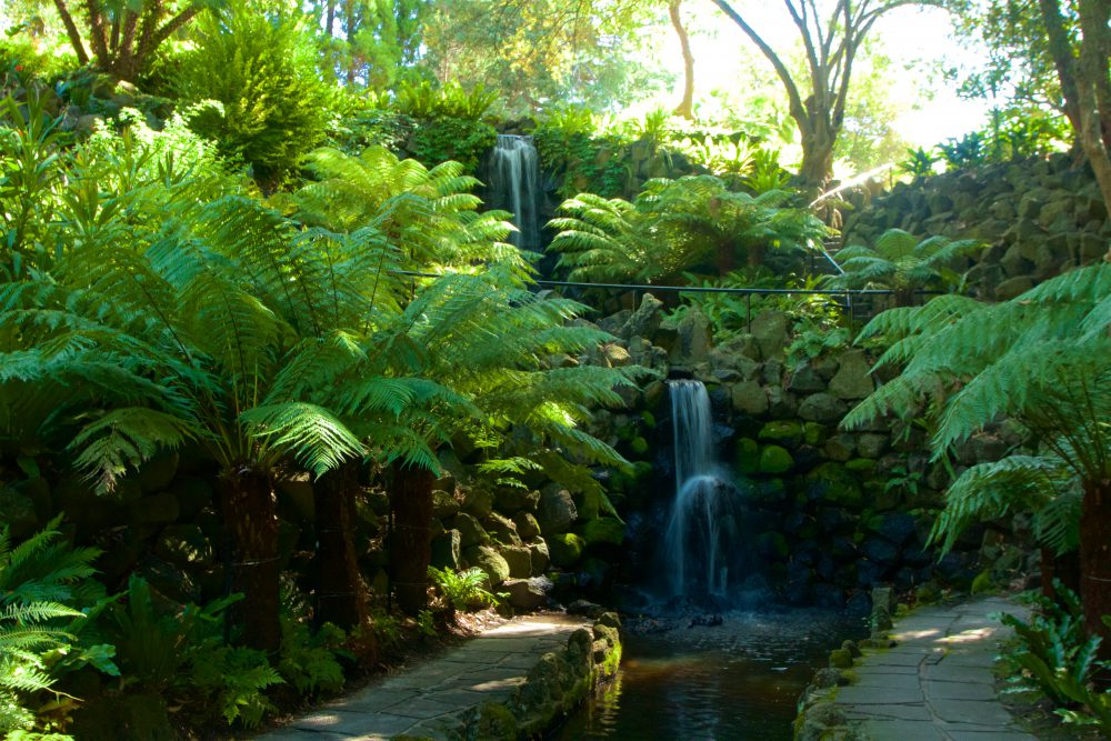 Waterfall in Royal Botanic Gardens in Melbourne