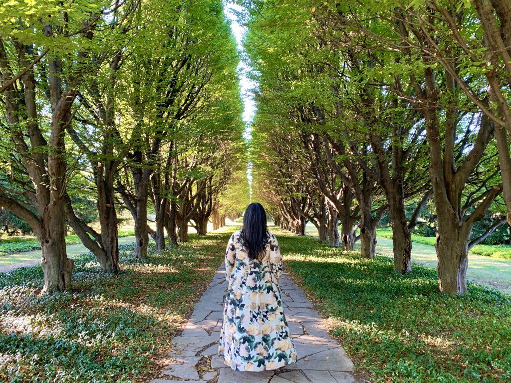 Niagara Parks Botanical Gardens are gorgeous during any season.